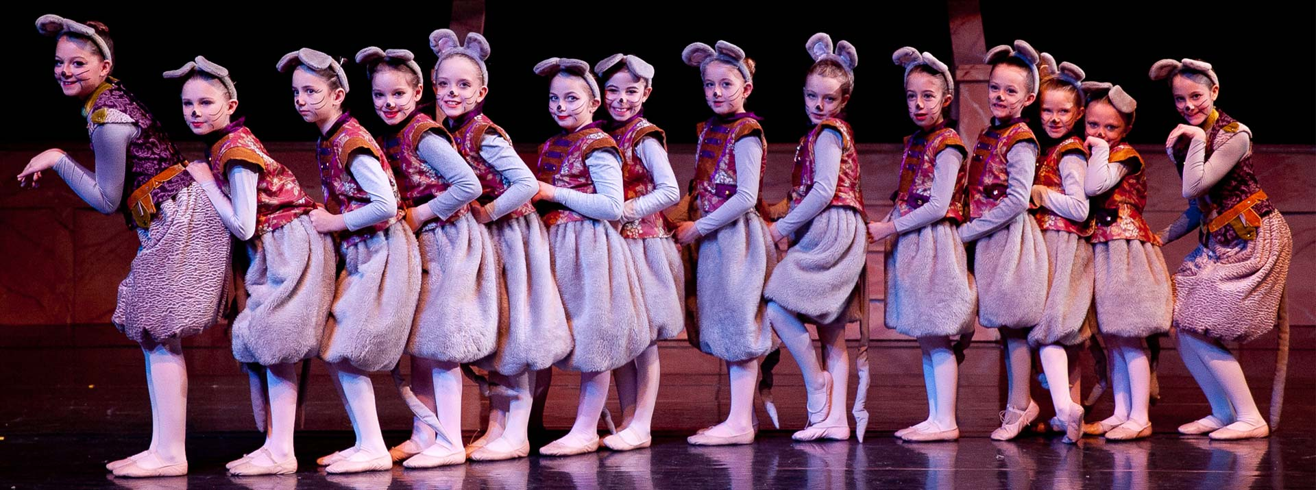 Programs at the Garden City Ballet - 14 girls with mice costumes